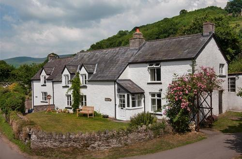 Last Minute Cottages - Wonderful Cwmdu Cottage S41229