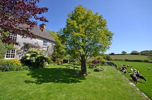 Gorgeous Dartmoor Manaton Cottage S58483