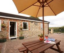 Snaptrip - Last minute cottages - Lovely East Devon Axminster Cottage S60393 - IMG_9014_R