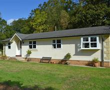 Snaptrip - Last minute cottages - Cosy Brockenhurst Lodge S58918 - Dilton Glen