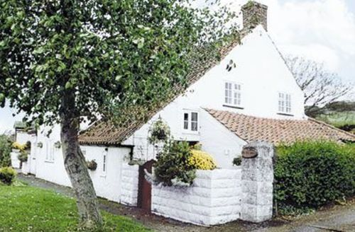 Snaptrip - Last minute cottages - Wonderful Cayton Cottage S14995 -