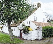 Snaptrip - Last minute cottages - Wonderful Cayton Cottage S14995 -