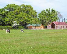 Snaptrip - Last minute cottages - Wonderful Uckfield Cottage S14046 -