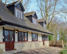Snaptrip - Last minute cottages - Adorable Shanklin Cottage S14348 -
