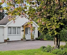 Snaptrip - Last minute cottages - Superb Stowmarket Cottage S18029 -