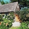 Snaptrip - Last minute cottages - Excellent Beaminster Cottage S19614 -