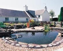 Snaptrip - Last minute cottages - Tasteful Fishguard Cottage S21819 -