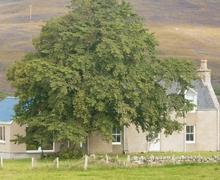 Snaptrip - Last minute cottages - Quaint Tain Cottage S22877 -
