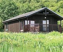 Snaptrip - Last minute cottages - Gorgeous Tighnabruaich Cottage S23201 -