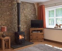 Snaptrip - Last minute cottages - Quaint Newcastle Emlyn Cottage S56444 -