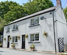 Snaptrip - Last minute cottages - Superb Fishguard Cottage S21842 -
