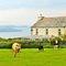 Snaptrip - Last minute cottages - Exquisite Bodmin House S8527 -