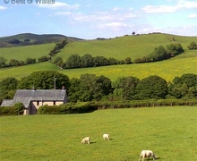 Snaptrip - Last minute cottages - Captivating Melin Byrhedyn Cottage S57903 - Charming Welsh holiday cottage, Machynlleth in Mid Wales
