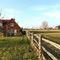 Snaptrip - Last minute cottages - Adorable Iden Cottage S80014 -