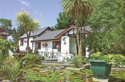 Snaptrip - Last minute cottages - Attractive Beaworthy Cottage S18873 -