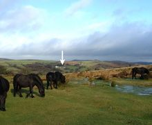 Snaptrip - Last minute cottages - Quaint Widecombe In The Moor Cottage S34026 -