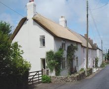 Snaptrip - Last minute cottages - Delightful Hawkchurch Cottage S34194 -