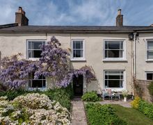 Snaptrip - Last minute cottages - Lovely Charmouth Cottage S34259 -