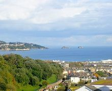 Snaptrip - Last minute cottages - Tasteful Paignton Lodge S19392 -