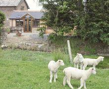 Snaptrip - Last minute cottages - Exquisite South Brent Cottage S19558 -
