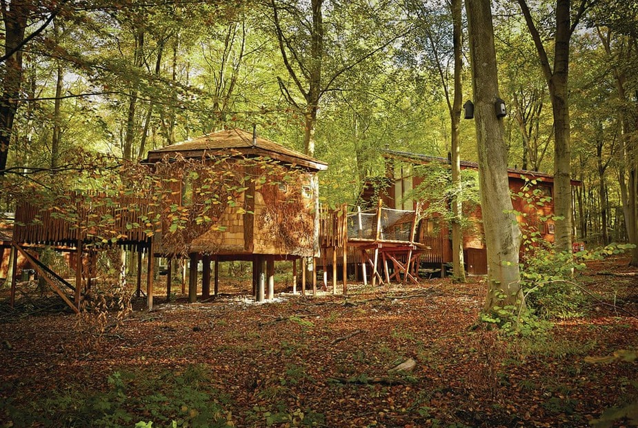 Forest Of Dean Golden Oak Plus Treehouse Pet Forest Of Dean Golden Oak Plus Treehouse Pet Coleford Coleford Last Minute Cottages