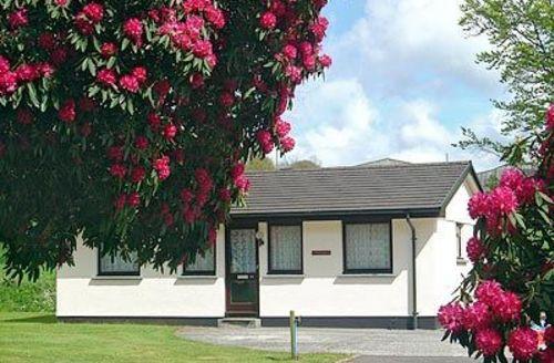 Snaptrip - Last minute cottages - Delightful Liskeard Cottage S20966 -