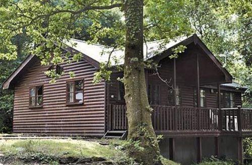 Snaptrip - Last minute cottages - Excellent Llansteffan Lodge S21753 -