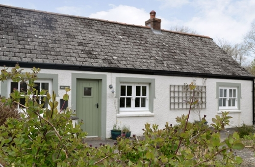 Snaptrip - Last minute cottages - Wonderful Fishguard Cottage S21836 -