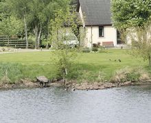Snaptrip - Holiday cottages - Beautiful Lairg Cottage S22849 -