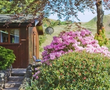 Snaptrip - Last minute cottages - Luxury Oban Cottage S23161 -