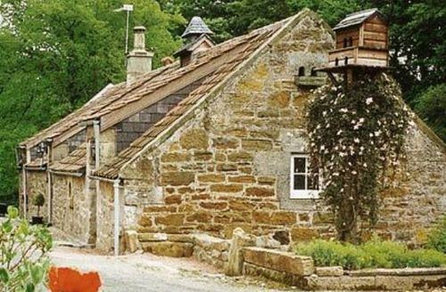 Snaptrip - Last minute cottages - Inviting St Andrews Cottage S23317 -