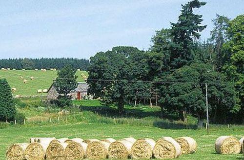 Snaptrip - Last minute cottages - Delightful Blairgowrie Cottage S23323 -