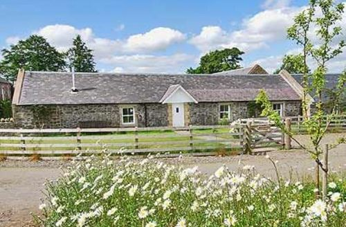 Snaptrip - Last minute cottages - Stunning Biggar Cottage S23536 -