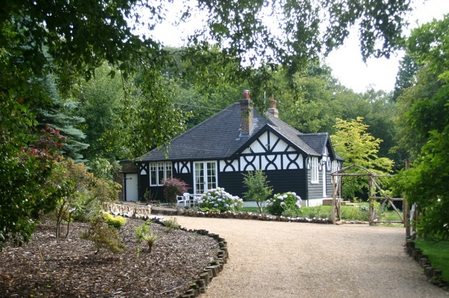 Blackdown Cottage Blackdown Cottage and own private drive