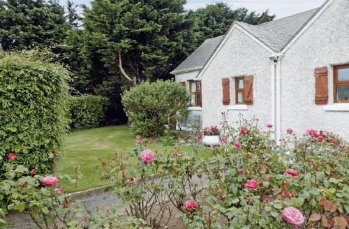 Snaptrip - Last minute cottages - Delightful Fethard On Sea Cottage S24199 -