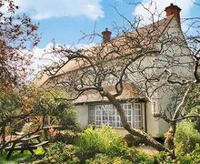 Snaptrip - Last minute cottages - Charming Exmouth Cottage S24239 -