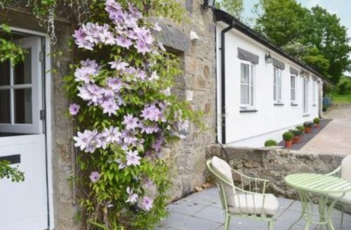 Snaptrip - Last minute cottages - Lovely Benllech Cottage S24731 -