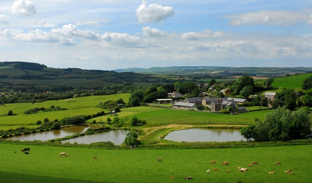 Nettlecombe Farm Cottages