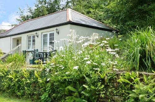Snaptrip - Last minute cottages - Lovely Gunnislake Cottage S2320 -