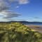 Dornoch Firth View