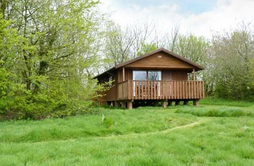 Snaptrip - Last minute cottages - Splendid Winkleigh Lodge S2915 -