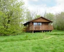 Snaptrip - Last minute cottages - Splendid Winkleigh Lodge S2915 -