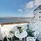 Snaptrip - Last minute cottages - Captivating Appledore Rental S12108 - View from Patio