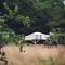 Snaptrip - Last minute cottages - Splendid Hereford Log Cabin S45902 -