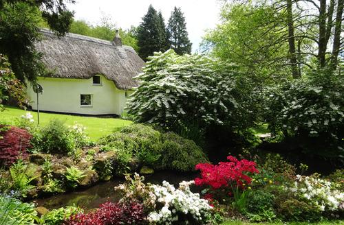 Snaptrip - Last minute cottages - Splendid Drewsteignton Cottage S33966 -