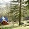 Slowpool & Littlepool, Offwell, near Honiton Slowpool and Littlepool are set within six acres of woodland