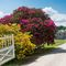 Snaptrip - Holiday cottages - Luxury Cornwall Cottage S72593 - The stunning entrance way into this grand private estate