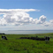 Snaptrip - Last minute cottages - Luxury Dumfries & Galloway Cottage S104618 - farmview_orig-web