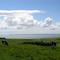Snaptrip - Last minute cottages - Gorgeous Dumfries & Galloway Cottage S104743 - farmview_orig