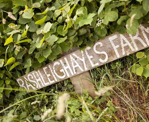Rashleighayes Farm